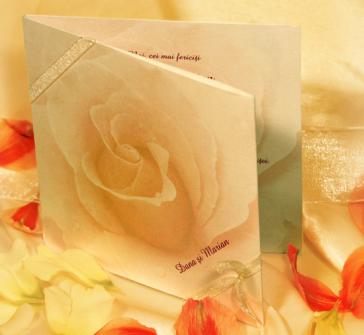 Invitatie de nunta cu un trandafir mare pastel